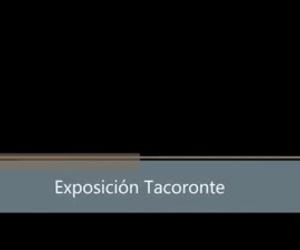 Expo Cortelima  Madera laminada Casas Tacoronte