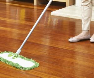 Todos los productos y servicios de Empresa de limpieza: Limpiezas Coloma