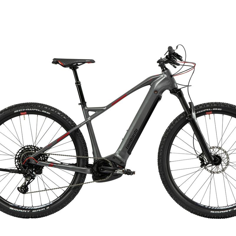 """EBIKE LOMBARDO CHAMONIX 10.0 29"""" 2021:  de E-Bike Guadarrama"""