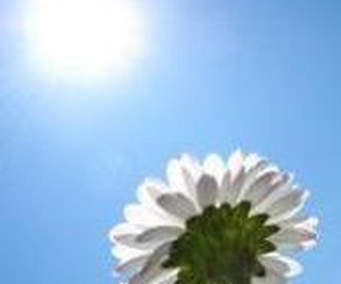 Energía solar Torredembarra