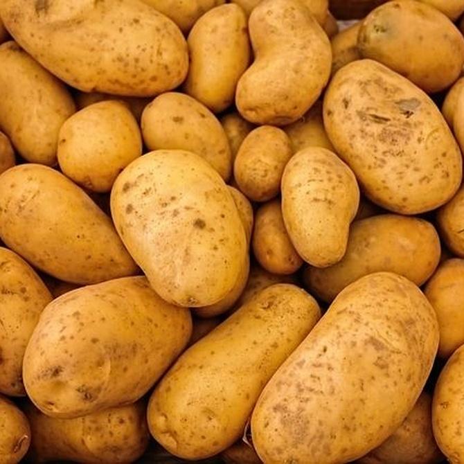 Beneficios nutricionales de la patata