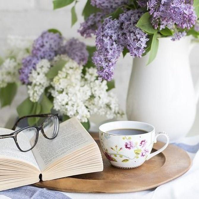 Falsos mitos sobre las gafas progresivas