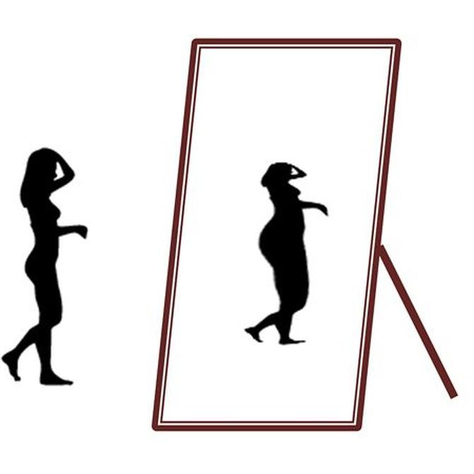 Semejanzas y diferencias entre anorexia y bulimia II
