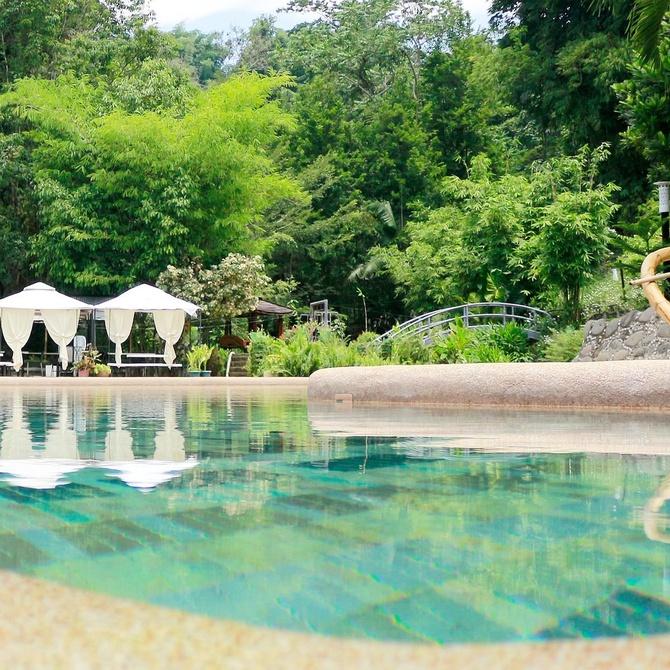 ¿Qué hago si el agua de mi piscina se vuelve verde?