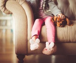 Nuevo cachorro en casa: ¿qué tener en cuenta? (II)