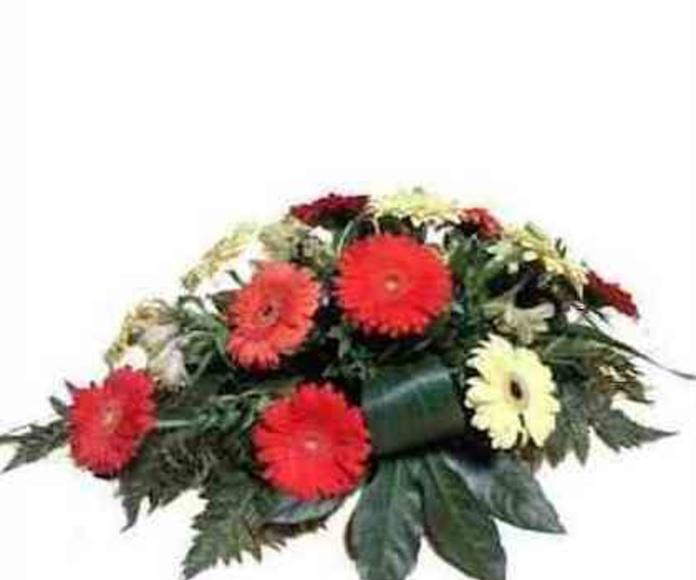 Cojinete gerberas: Catálogo de Regalos de Floresdalia.com