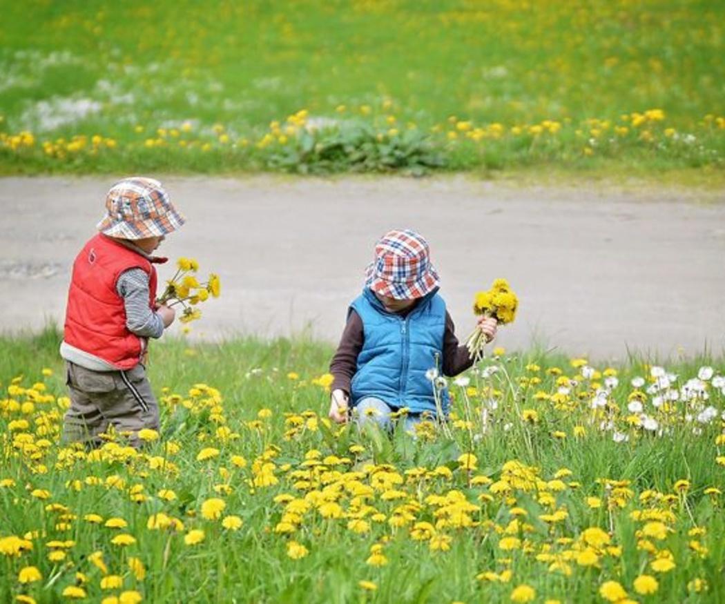 La rinitis alérgica en los niños