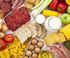 Otros productos de alimentación