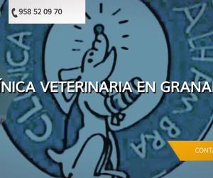 Veterinario 24h en Granada | Clínica Veterinaria Alhambra
