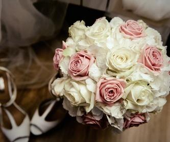 Flores y plantas: Servicios de Floristería Albuerne