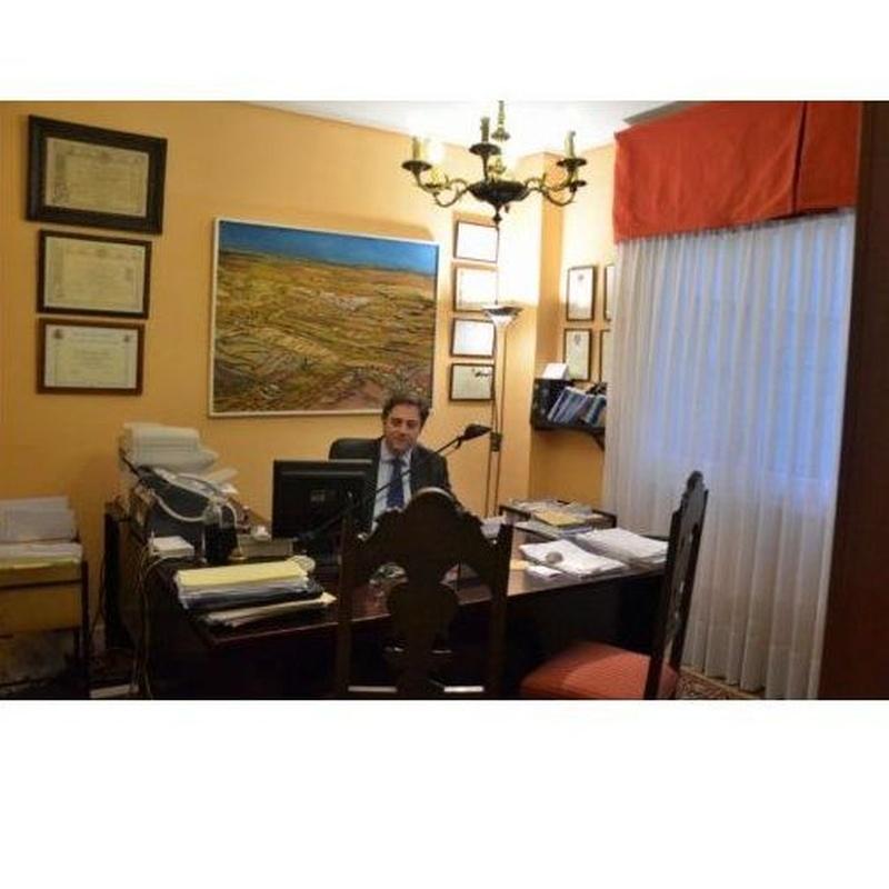 Procedimiento contencioso de separación o divorcio: Áreas de Actuación de ProJur Protección Jurídica