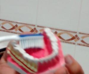 Consejos para el cuidado de tu salud oral
