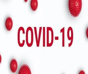 Servicio a los asegurados ante el coronavirus