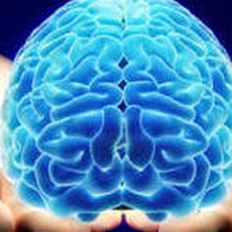 Neurocirujía: Servicios médicos de Centro Médico Trébol