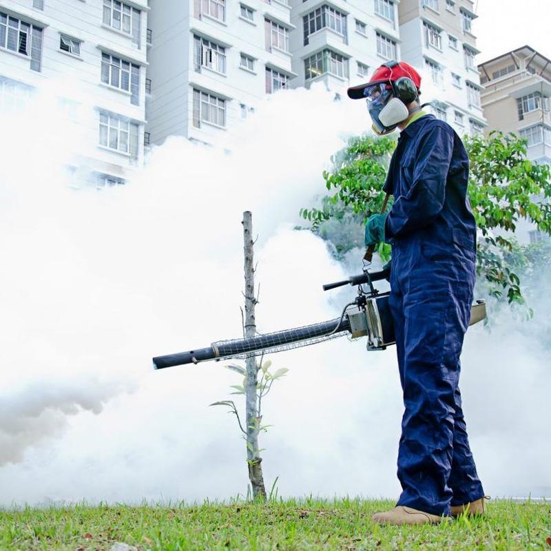 Control de plagas: Servicios de LAN Limpieza Industrial