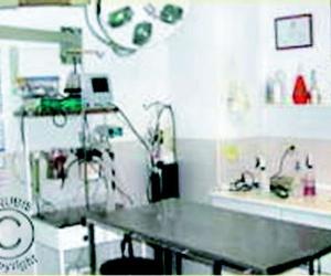 Clínica veterinaria en Pozuelo de Alarcón | Anubis Clínica veterianria