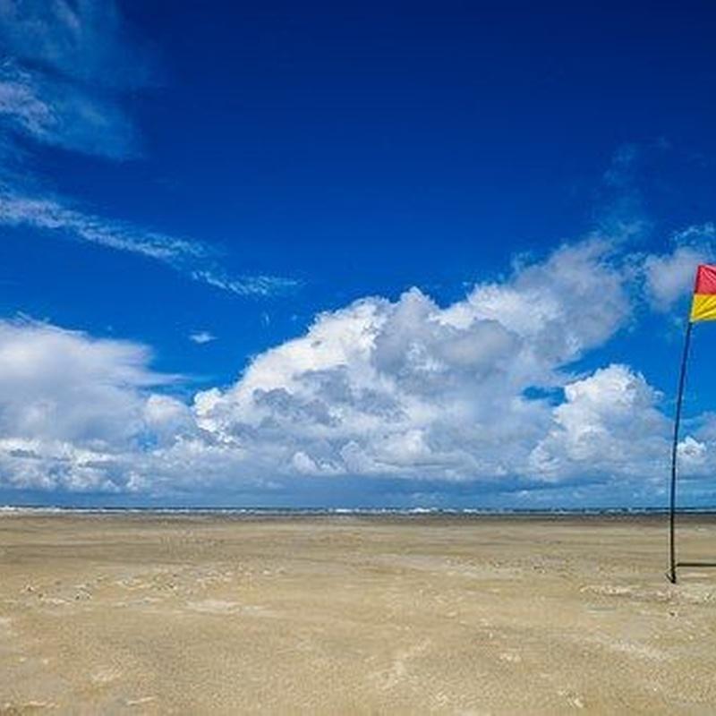 Banderas: Servicios de Vinils i Més