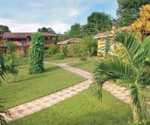 Fotos de Jardines (diseño y mantenimiento) en Carballo | Jardinería Suso