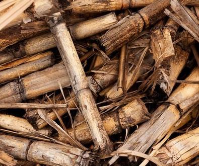 Beneficios de las calderas de biomasa