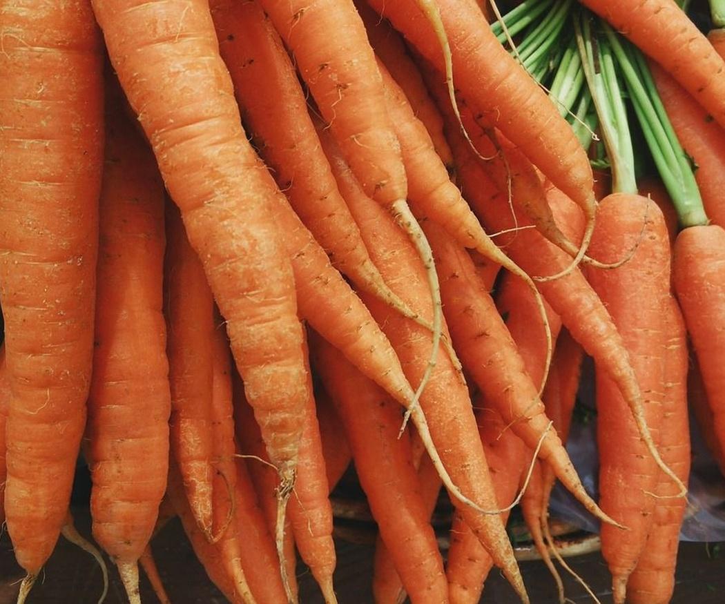 Por qué es bueno comer hortalizas