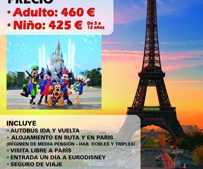 Viajes a París, Viajes Torre Alta, Viajes economicos Murcia, Viajes a parques temáticos desde Murcia, Alquiler de autocares baratos Murcia, Autocares Torre Alta