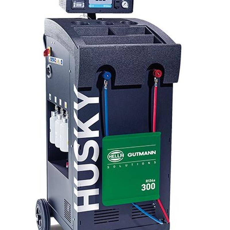Gutmann Husky 300 (R134-A): Productos de Cometil España