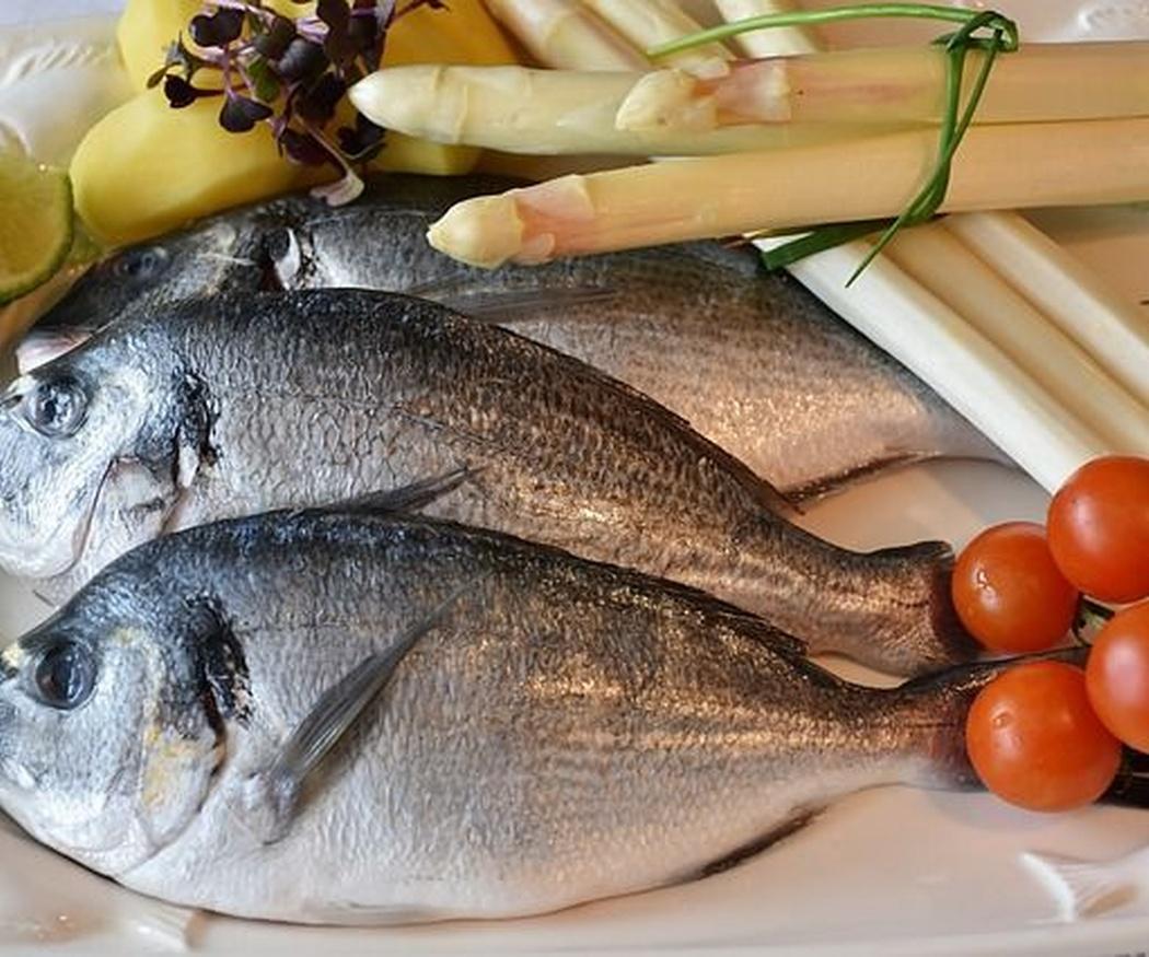 ¿Comes pescado? Observa todos sus beneficios