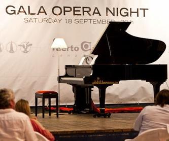 Reparación,regulacion y restauracion integral  de pianos.: Servicios de Arreglamipiano