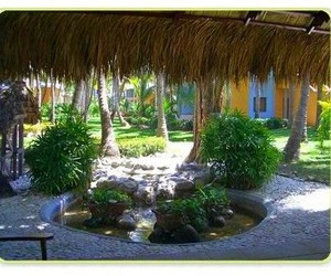 Diseño y ejecución de jardines
