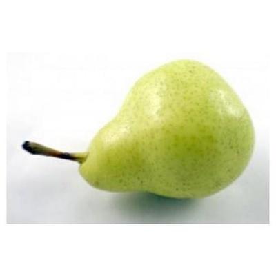 Venta y distribución: Frutas Bermejo, S.L.
