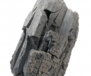 Carbón vegetal en Las Palmas