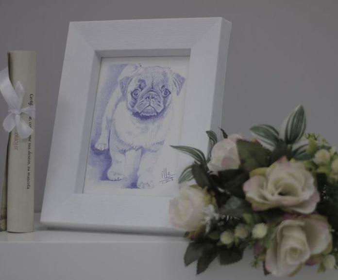Crematorio de mascotas Valencia