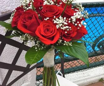 Bouquet de rosas: Catálogo de Flores Maranta