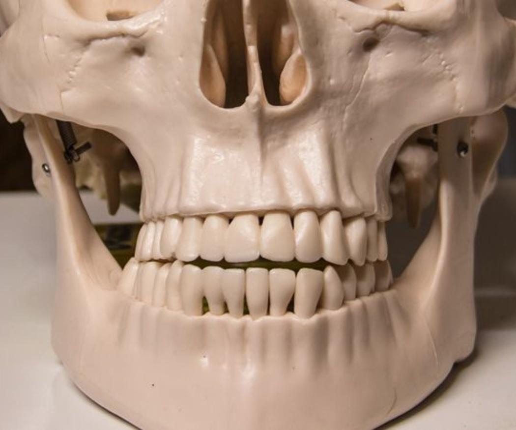¿Qué es la odontología forense?