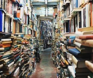 Librerías de economía: ¿relevantes o irrelevantes?