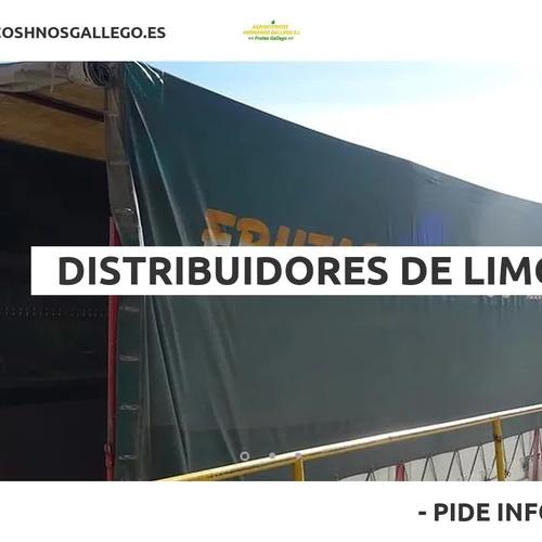 Producción y distribución de limones en  | Agriocítricos Hermanos Gallego