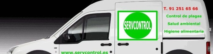 Control de plagas en Madrid|servcontrol