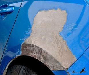 Consejos para cuidar la pintura del coche