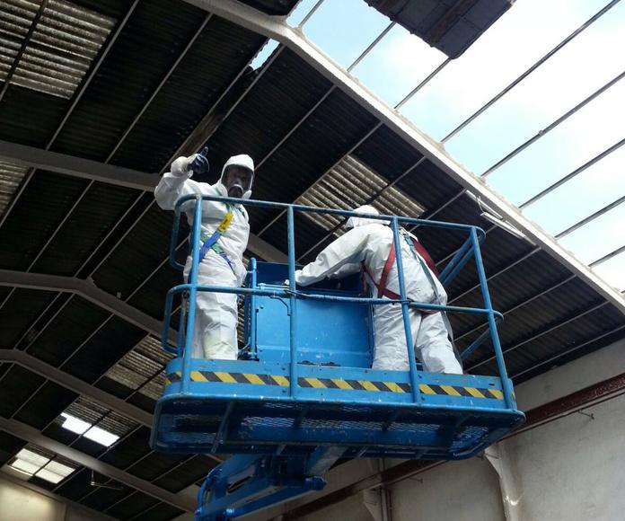 Desmantelamiento de instalaciones de Amianto