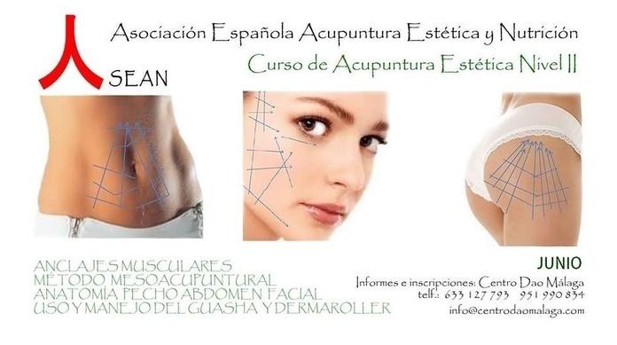 Acupuntura Estética nivel 2: Cursos y tratamientos de Centro Dao Málaga