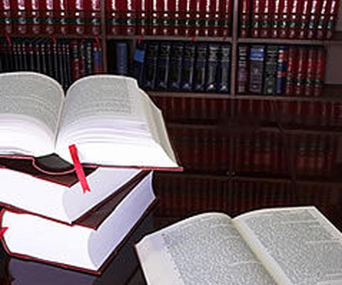 Derecho administrativo: Servicios de Carles Aranda Mata