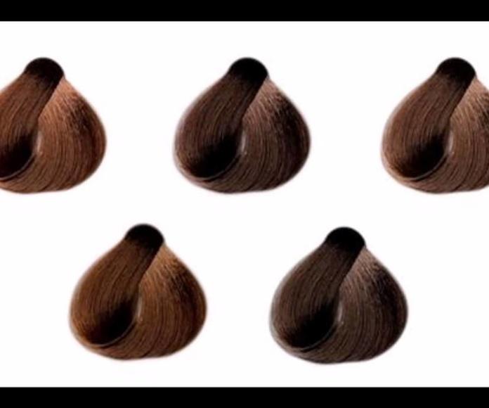 Tendencias color 2017,Dale color a tu pelo!!
