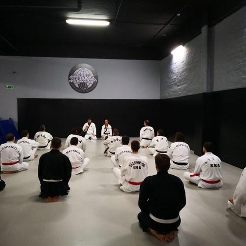 Artes marciales en Madrid
