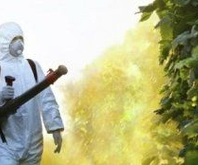 Desinfección: Servicios de ESIM
