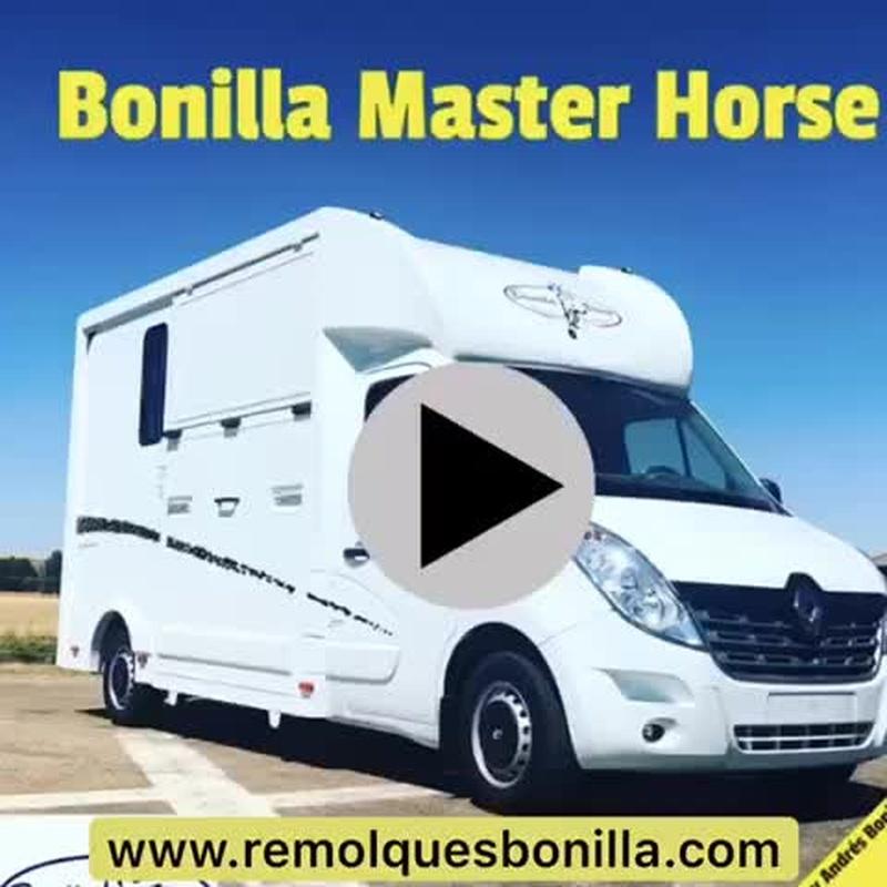 Bonilla Master Horse