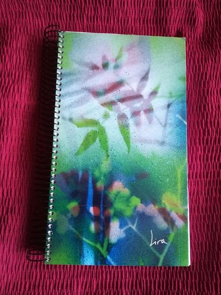 LiraNaturaleza: Cuadernos pintados a mano.