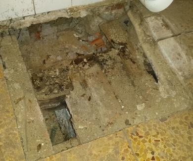 Desalojo en 11 viviendas del país vasco por culpa de las termitas