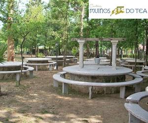Mesas en Carrizos