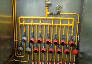 Gases licuados del petróleo (GLP)