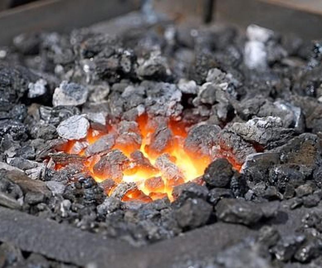 ¿Cuántos tipos de carbón existen?